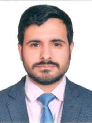 Mr. Himanshu Pabbi